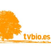 foto noticia: Entrevista a Marta Epelde en TvBio para hablar sobre casas saludables.